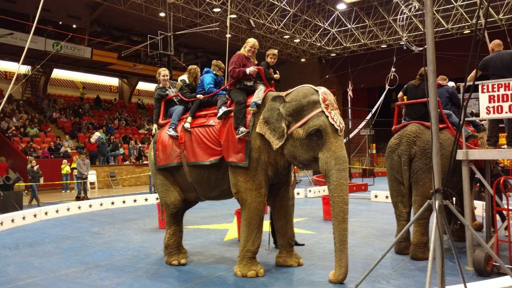 Five Things I Learned at a Three Ring Circus